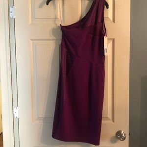 Amethyst Halston Heritage Dress